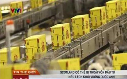 Scotland có thể bị thoái vốn đầu tư nếu tách khỏi Vương quốc Anh