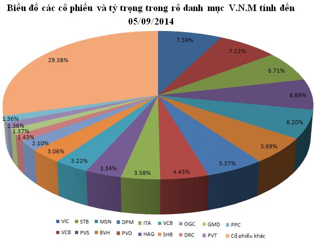 Tâm điểm review V.N.M ETF: IJC, FLC, GMD và VIC?