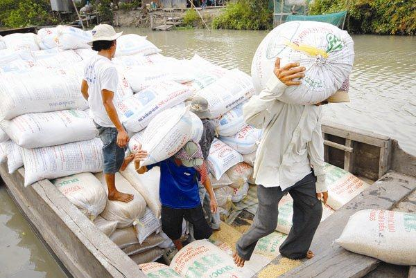 Thêm đầu mối bán gạo vào thị trường tập trung: Vẫn lối cũ ta về!