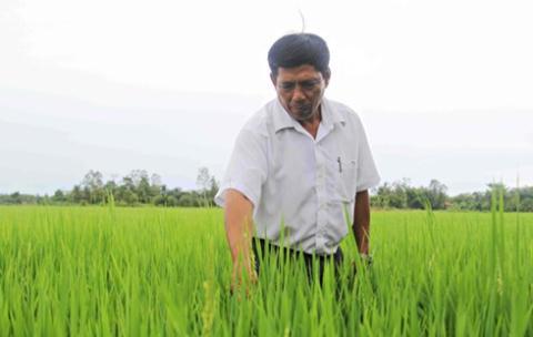 Nông dân sang Lào làm chuyên gia được trả lương 20 triệu/tháng