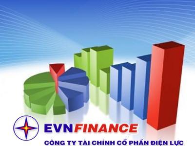 Nghịch lý đấu giá Công ty tài chính EVNFC?