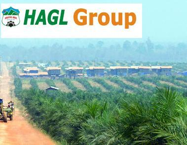 HAG: Bổ nhiệm ông Võ Trường Sơn làm TGĐ, kế hoạch lãi trước thuế 2,100 tỷ