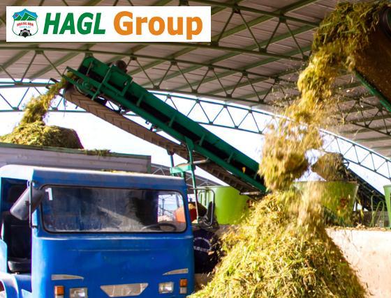 10 chủ nợ của HAG đang trình phương án giải cứu lên NHNN