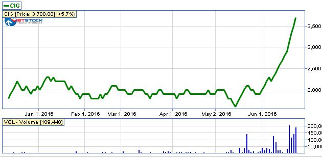 CIG: 16 phiên giao dịch thì 15 phiên trần, giá đã nhảy vọt 85%