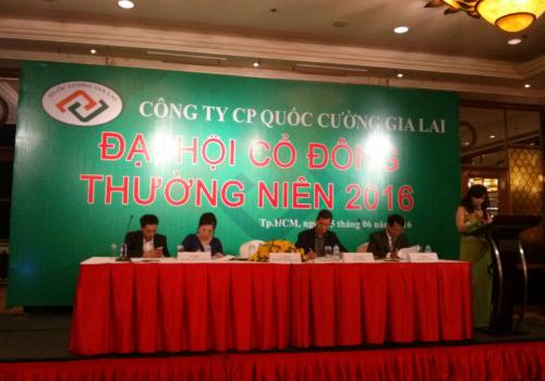 ĐHĐCĐ QCG: Chủ tịch Như Loan cam kết đạt kế hoạch lợi nhuận 2016