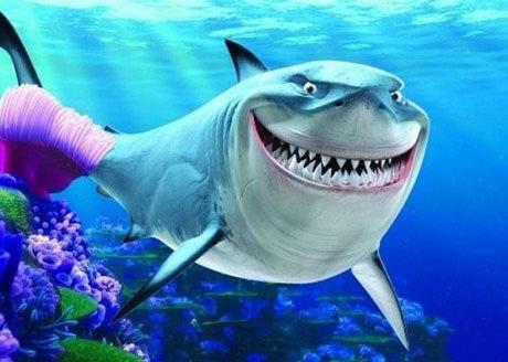 """Bí quyết chống """"Cá mập"""": Nhận diện chiến thuật của đội lái"""