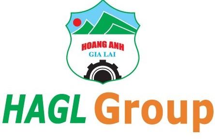 HAG: Quý 2 chính thức lỗ gần 908 tỷ đồng