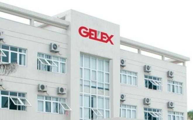 GEX: MB Capital trở thành cổ đông lớn