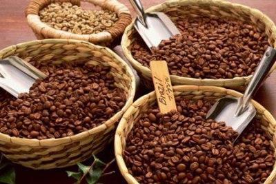 Xuất khẩu cà phê 10 tháng tăng hơn 40% về khối lượng