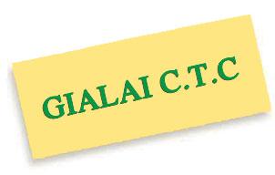 CTC: Ủy viên HĐQT Trần Thiện đăng ký thoái hết 9.48% vốn
