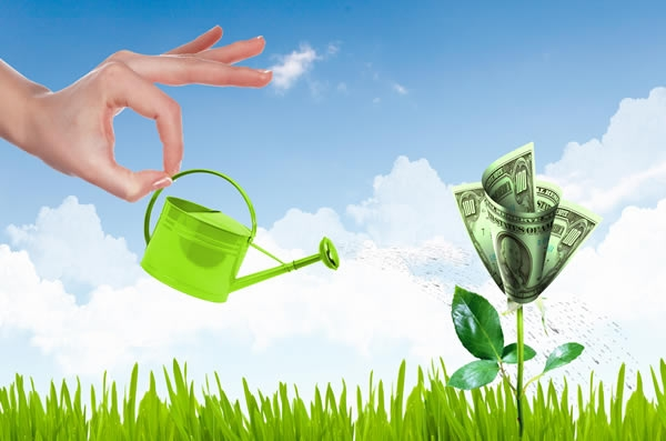 Nhà đầu tư nên đổ tiền vào đâu trong năm 2017?