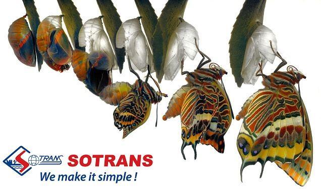 Sau hơn 1 năm rời vòng tay SCIC, Sotrans lột xác đến khó tin