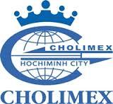 Cholimex: Nhiều khoản đầu tư và nợ phải thu khó đòi chưa được trích lập dự phòng