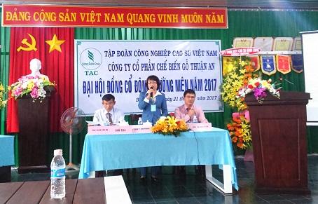 ĐHĐCĐ Gỗ Thuận An: Vì sao đặt kế hoạch 2017 đi ngang?