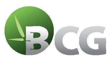 BCG: Imperial Dragon Invesment đăng ký mua 1.15 triệu cp