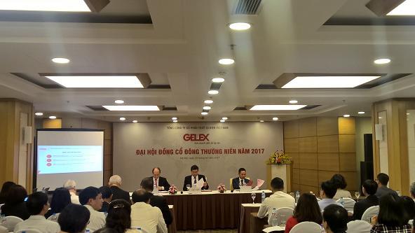 ĐHĐCĐ GEX: Lãi ròng quý 1 đột biến nhờ STG, mục tiêu hoàn thành dự án Trần Nguyên Hãn năm 2020