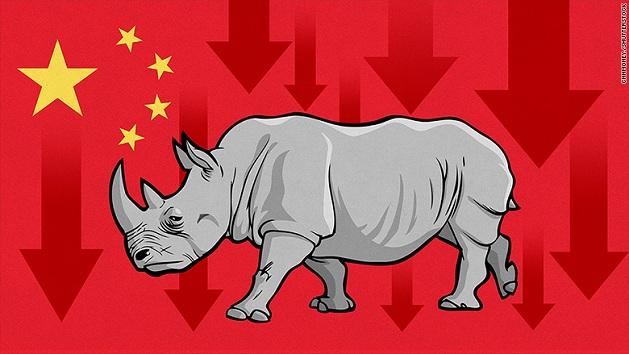 """""""Tê giác xám"""" là gì mà khiến nhà điều hành Trung Quốc đứng ngồi không yên?"""