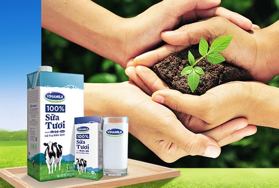 F&N Dairy Investments quyết tâm gom hơn 14.5 triệu cp Vinamilk