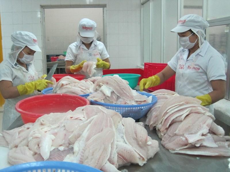 Sốc: Mỹ áp mức thuế cao khủng khiếp lên cá tra Việt Nam