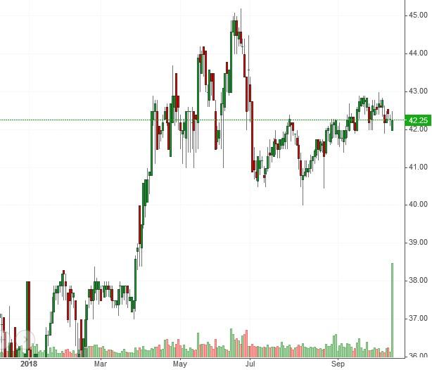 Nhịp đập Thị trường 12/10: Thị trường đã thực sự hồi phục?