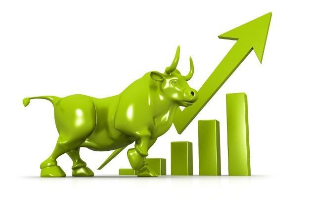 Nhịp đập Thị trường 12/12: Cầu giá xanh hoạt động tích cực