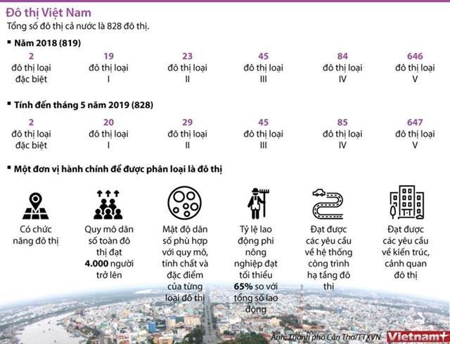 [Infographics] Tốc độ đô thị hóa đang tăng nhanh trên cả nước hình ảnh 1