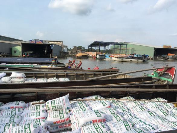 Xuất khẩu gạo giảm mạnh tạo áp lực lên tiêu thụ lúa hè thu - Ảnh 2.