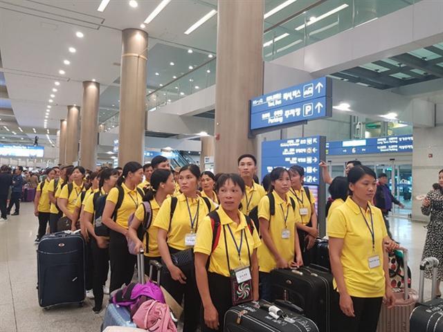 'Sốt' đi Hàn Quốc làm lao động thời vụ