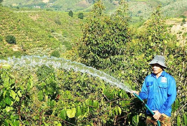 Nguy cơ lao động Việt Nam thua trên 'sân nhà'