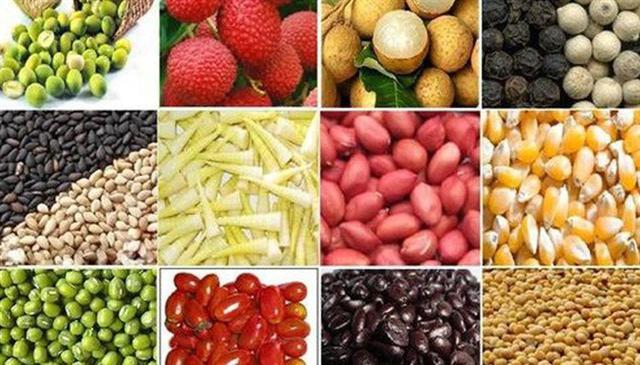 Xuất khẩu nông sản sang EU: Cửa mở rộng, nhưng không dễ vào