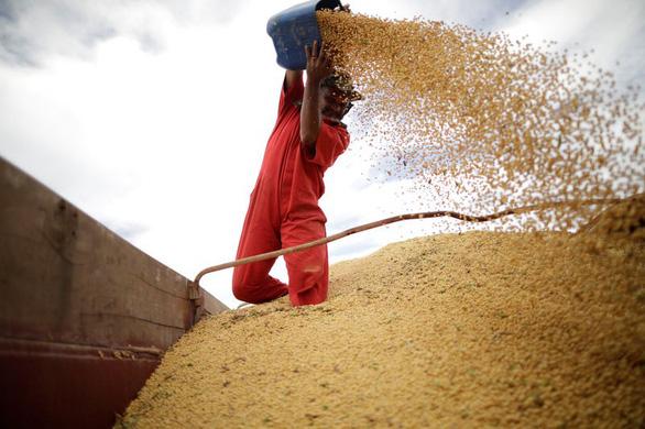 Trung Quốc cho phép mua lại đậu nành và thịt heo Mỹ - Ảnh 1.