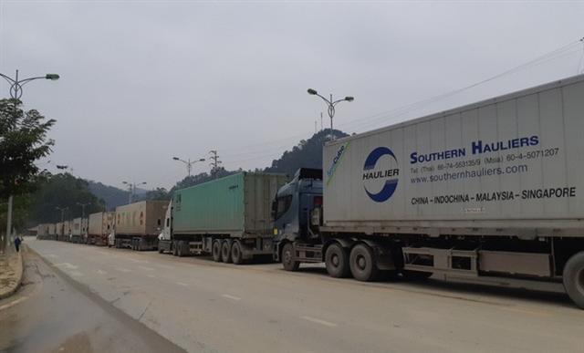 Hơn 700 container đang ùn ứ vì dịch Covid-19, nông sản vẫn ùn ùn lên cửa khẩu - Ảnh 1.
