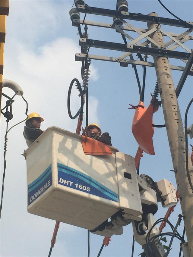 Điện lực TP HCM tạm ngưng nhiều dịch vụ từ ngày 1-4 - Ảnh 1.