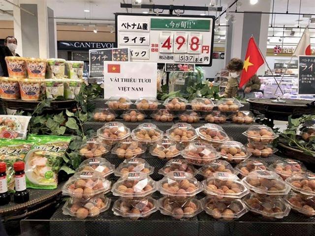 vải thiều xuất khẩu Nhật Bản giá cao ảnh 1