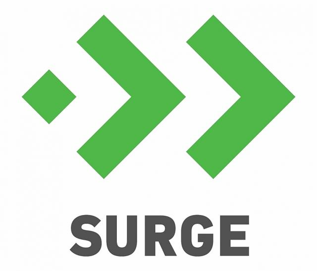 Sequoia Capital India's Surge selects Vietnamese startup in Surge 04 2020