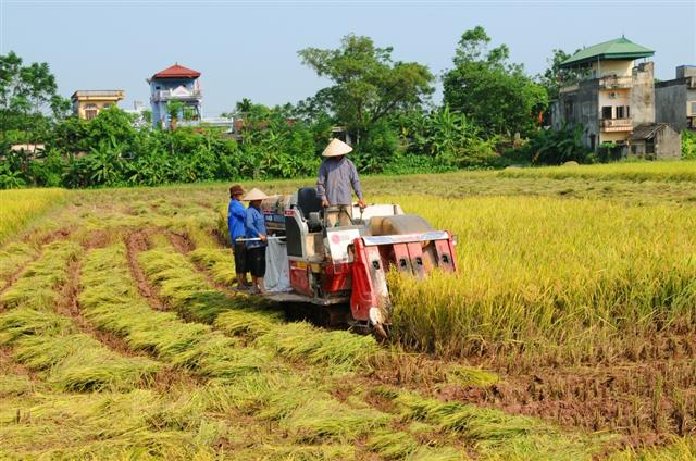 Business-cooperative-farmer linkage: Key to modern agriculture