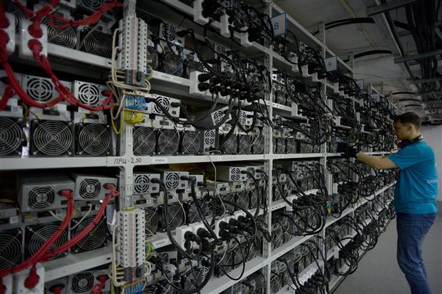 Giá Bitcoin ảnh 2