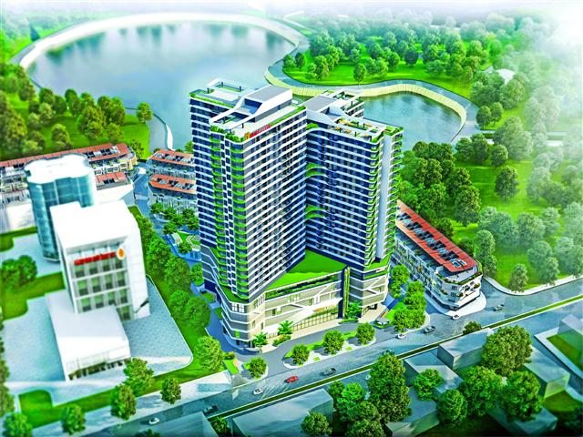A real estate, green energy, multi-sector success story