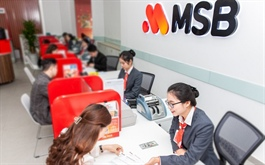 Chủ tịch MSB đăng ký mua 10 triệu cp